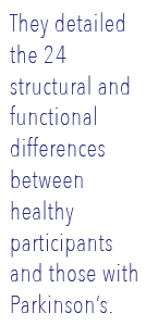They detailed the 24 structural and functional differences between healthy participants and those with Parkinson's.