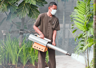 spraying insecticide